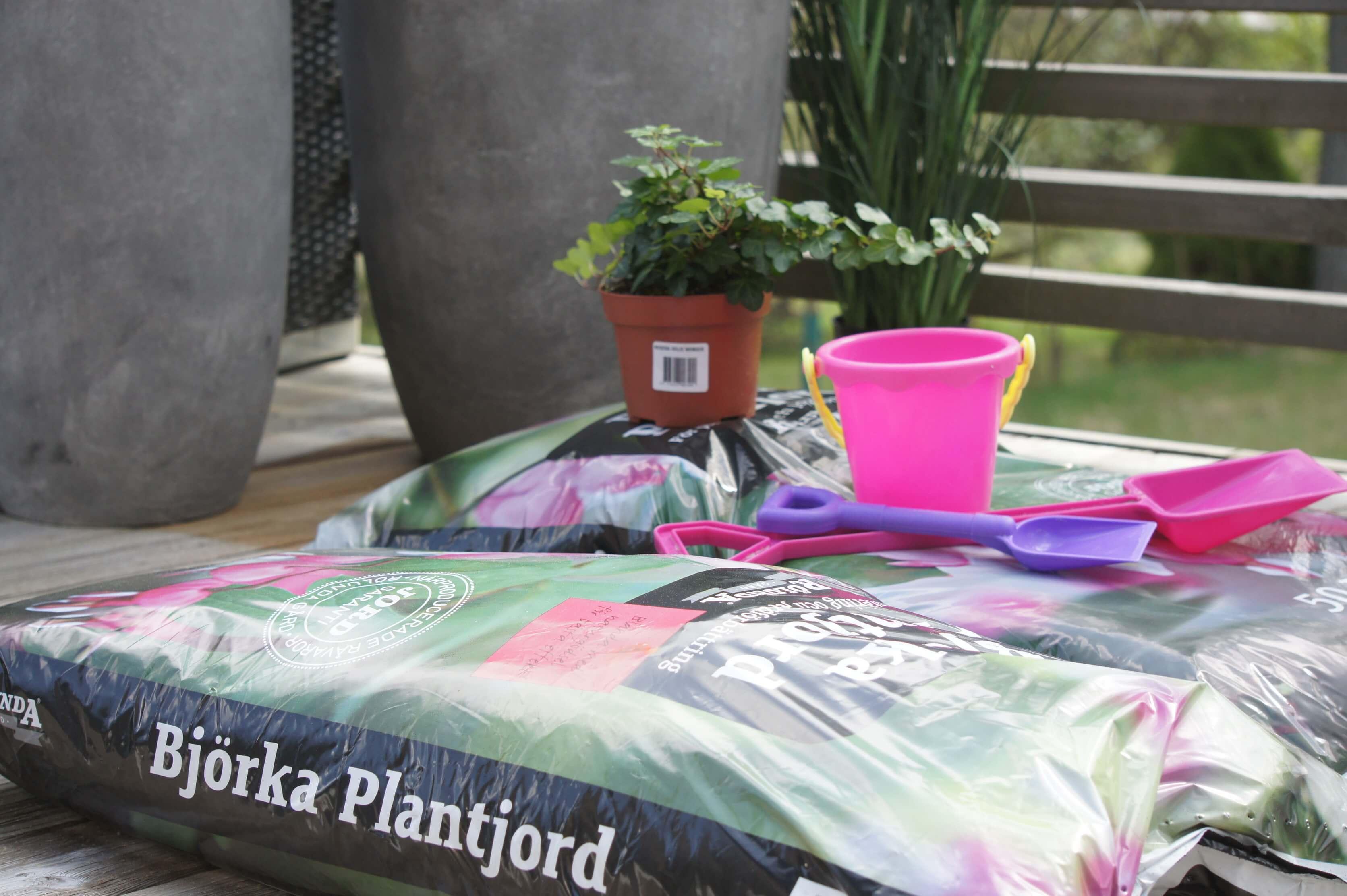 plantering, trädgård, altan, betong, blommor, plantagen